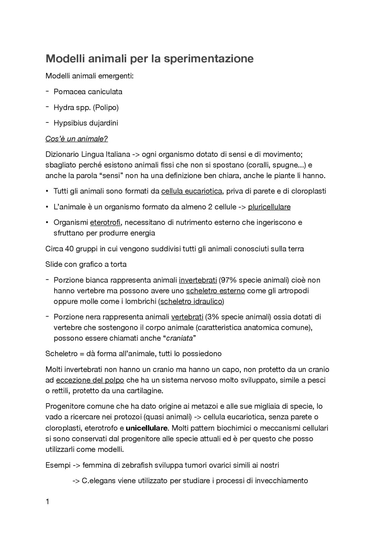 strategia binaria del modello a molla