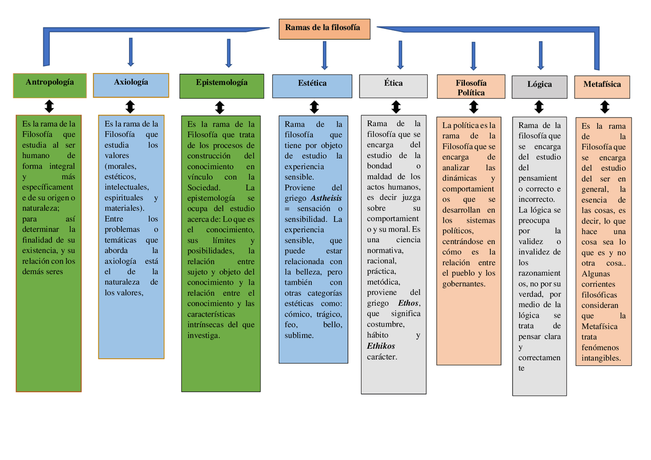 Mapa Conceptual De Las Ramas De La Filosofìa Docsity