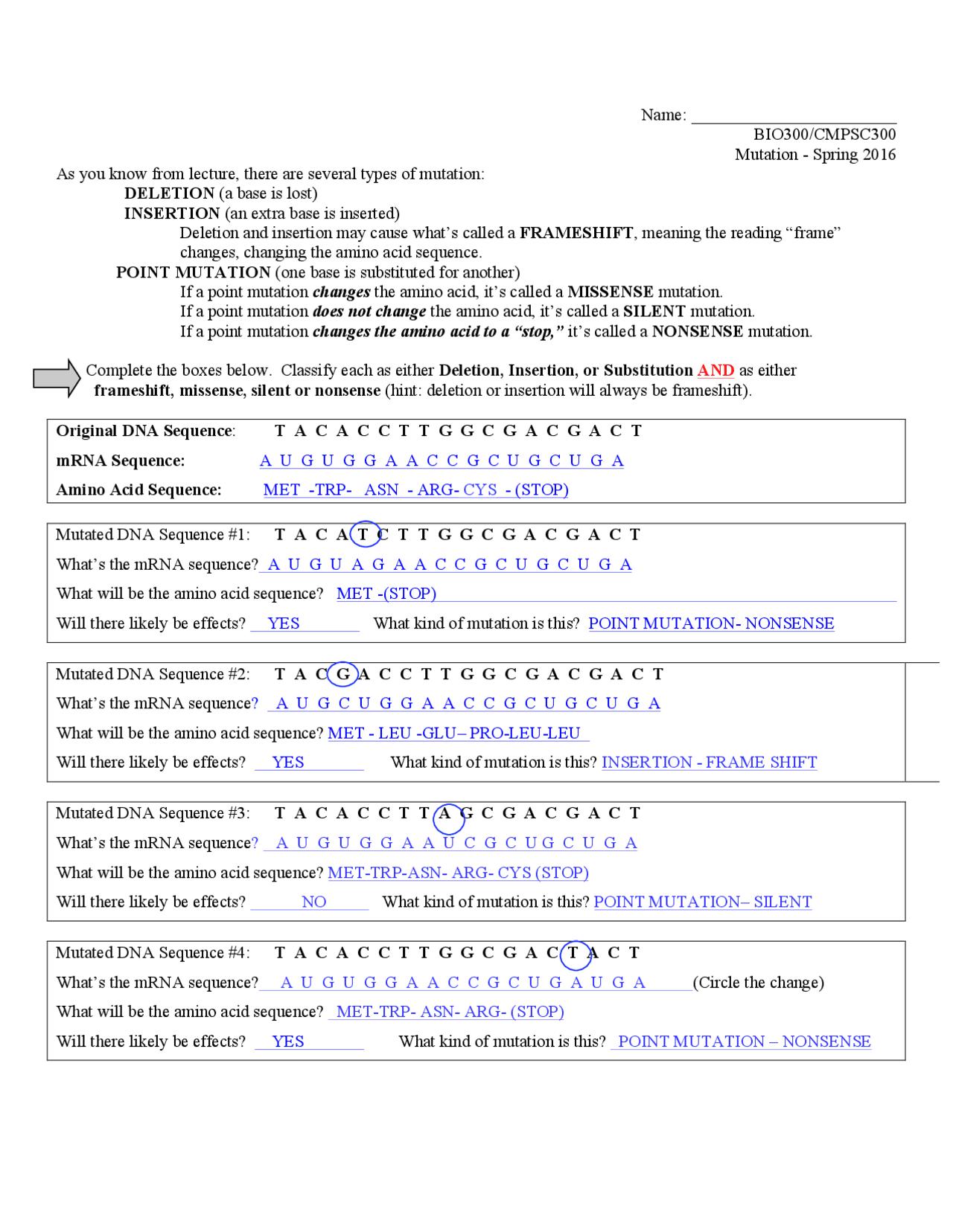 DNA Mutation Worksheet Key - Bioinformatics - Docsity With Dna Mutation Practice Worksheet Answers
