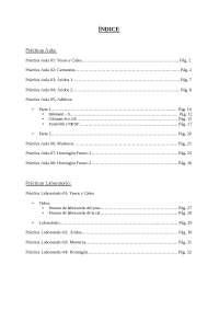 Practicas de aula y de laboratorio