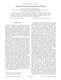 PRE-MinkowskianDescriptionPolarizedLigthPolarizers