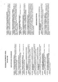 Programa del Curso 2007-2008