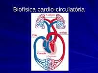 Aula de Pressão Sanguínea, Notas de aula de Fisioterapia