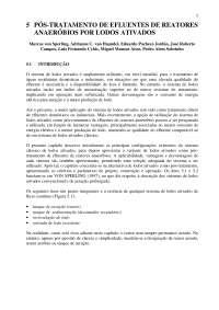 Pós tratamento de efluentes de reatores anaeróbios- cap 5, Notas de estudo de Engenharia Química