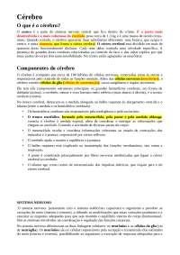 Sistema nervoso, Notas de estudo de Psicologia