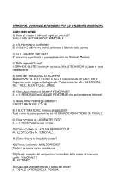 Anatomia - PRINCIPALI DOMANDE E RISPOSTE PER LO STUDENTE DI MEDICINA
