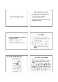 Biofísica da Circulação2, Notas de estudo de Biofísica