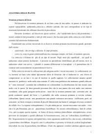 Biologia Vegetale - ANATOMIA DELLE PIANTE