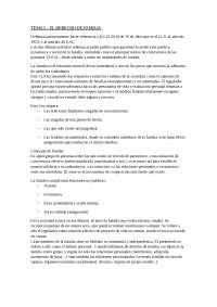 Dret Civil IV - Actualitzat Llibre Segon 2010
