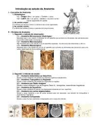 1.introdução ao estudo da anatomia EXCELENTE, Notas de estudo de Educação Física