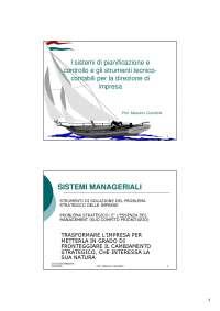 Programmazione e controllo -Sistemi di pianificazione e controllo