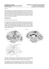 Cognitive Neuroscience-2003 Lecture Handout 01-Psychology