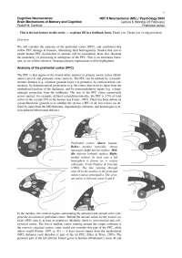 Cognitive Neuroscience-2004 Lecture Handout 06-Psychology
