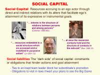 Social Capital, Trust, Reputation-Social Network Analysis Theories and Analysis-Lecture-Sociology