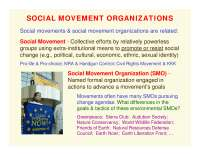 Social Movement Organizations-ORGANIZATIONS AND SOCIETY-Lecture-Sociology