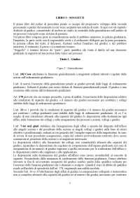 Riassunto di procedura penale, Pavia