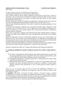 ordinamento giudiziario civile 2010-2011 Dott. Amato