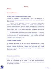 Conducto Coleodoco V - Trabajos - Medicina