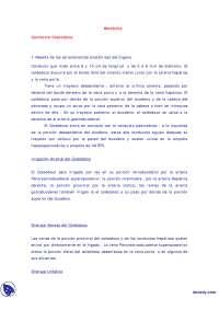 Conducto Coleodoco - Trabajos - Medicina