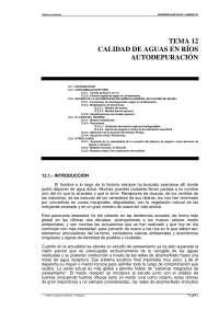 Calidad del agua en rios. Autodepuración - Ingenieria sanitaria y ambiental - Apuntes - Tema 12