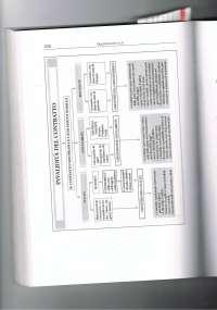 Invalidità del contratto - Schema