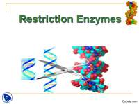 Restriction Enzymes-Biological Reactions-Lecture Slides