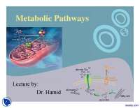 Metabolic Pathways Part 2-Advanced Systems Biology-Lecture Slides