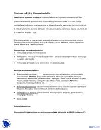 Sindrome nefritico - Apuntes - Nefrologia