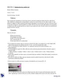 Práctica de Cable de red - Redes de area local - Administración de Sistemas Informáticos