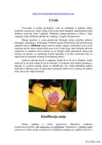 Zmije-Toksikologija-Seminarski rad-Biologija