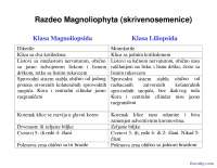 Dikotile-Slajdovi-Botanika-Farmacija (1)