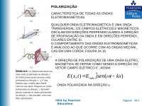 Polarização da Luz, Notas de estudo de Engenharia Informática