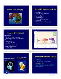 Human Brain Imaging - Radiology - Lecture Slides