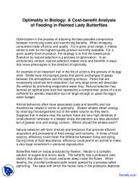 Painted Lady Butterflies - Zoology - Lab Handout