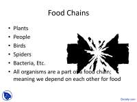 Food Chains - Food Science - Lecture Slides
