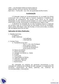 Fluidização - Apostilas - Engenharia, Notas de estudo de Engenharia Química