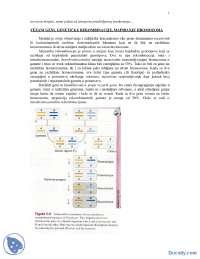 Rekombinacije-skripta-Principi Genetike