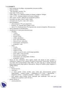 Câncer gástrico - Apostilas -  Gastroenterologia
