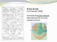 Introdução, origem e habitats - Apostilas - Biologia Molecular_Parte1