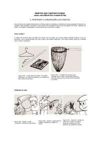 Montagem e conservação dos insetos - Apostilas - Biologia Aplicada