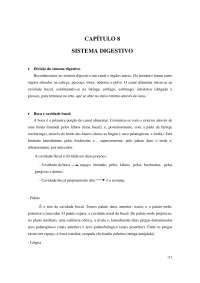 Sistema Digestivo - Apostilas - Bioquímica