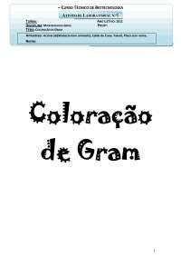 Relatório Microbiologia 1 - Coloração de Gram - Apostilas - Biotecnologia
