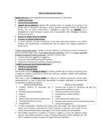 Diritto processuale penale - Introduzione - Diritto processuale