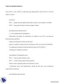 Herpes simples - Apostilas - microbiologia
