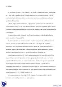 Traqueia e Pulmões - Apostilas - histologia