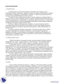 Esquistossomose - Apostilas - parasitologia