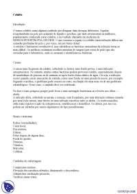 Celulite bacteriana - Apostilas - patologia