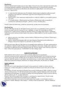 Plan BAKER'a plan BUDDY'ego - Notatki - Ekonomia rozwoju