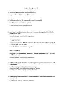 Sintassi - Esercizi - Linguistica generale