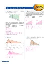 Exercícios Resolvidos Geometria Métrica Plana 1 - Apostilas - Matematica